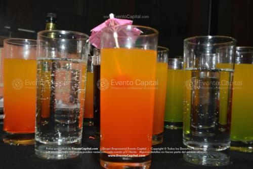 bebidas cocteles (14)