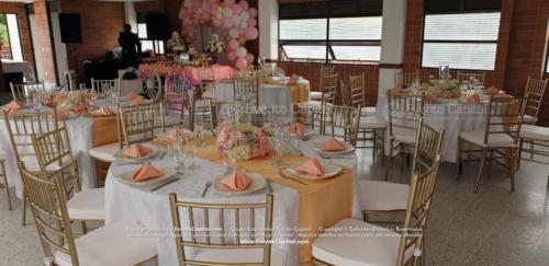 mesa redonda silla tiffany dorado (1)