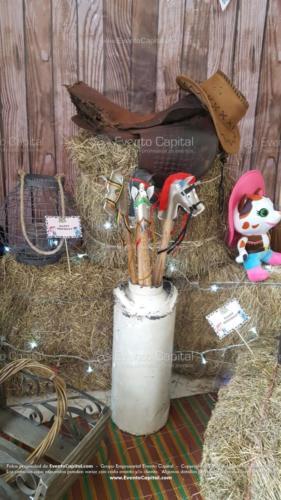 tematica sheriff callie accesorios peluche cantinas caballos escalera (1)