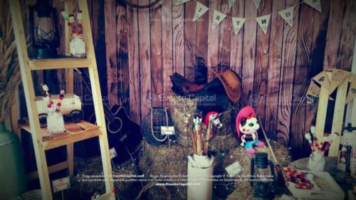 tematica sheriff callie stand fotografia (1)